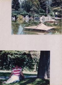 Image3-13